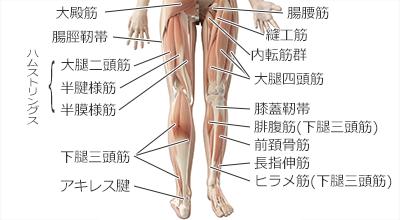 の と 痛い 膝 裏 曲げる 膝の裏を曲げたり伸ばすと痛い!膝裏の痛みと腫れについて解説します